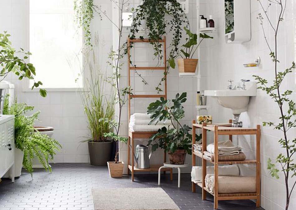 d coration salle de bain l aide d utiles et belles plantes d int rieur design feria. Black Bedroom Furniture Sets. Home Design Ideas