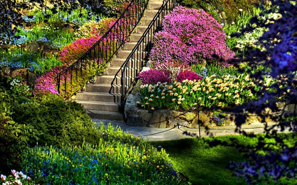 Les jardins aux plates bandes fleuries for Pinterest deco jardin
