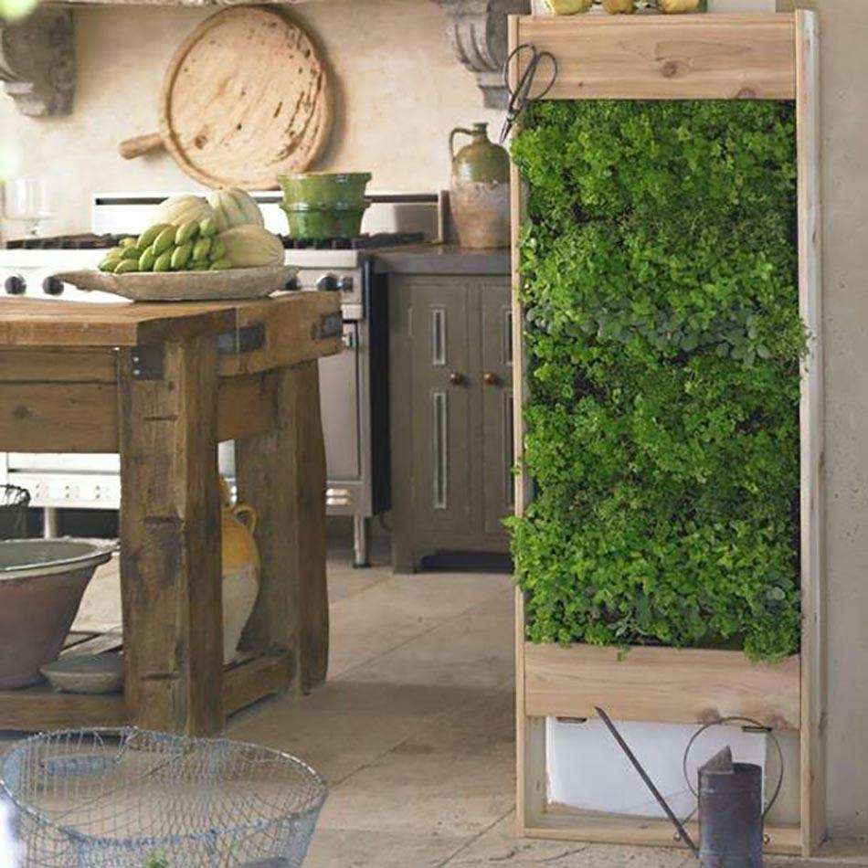 Plantes Aromatiques Sur Terrasse mini jardinières et pots d'intérieur aux herbes aromatiques !