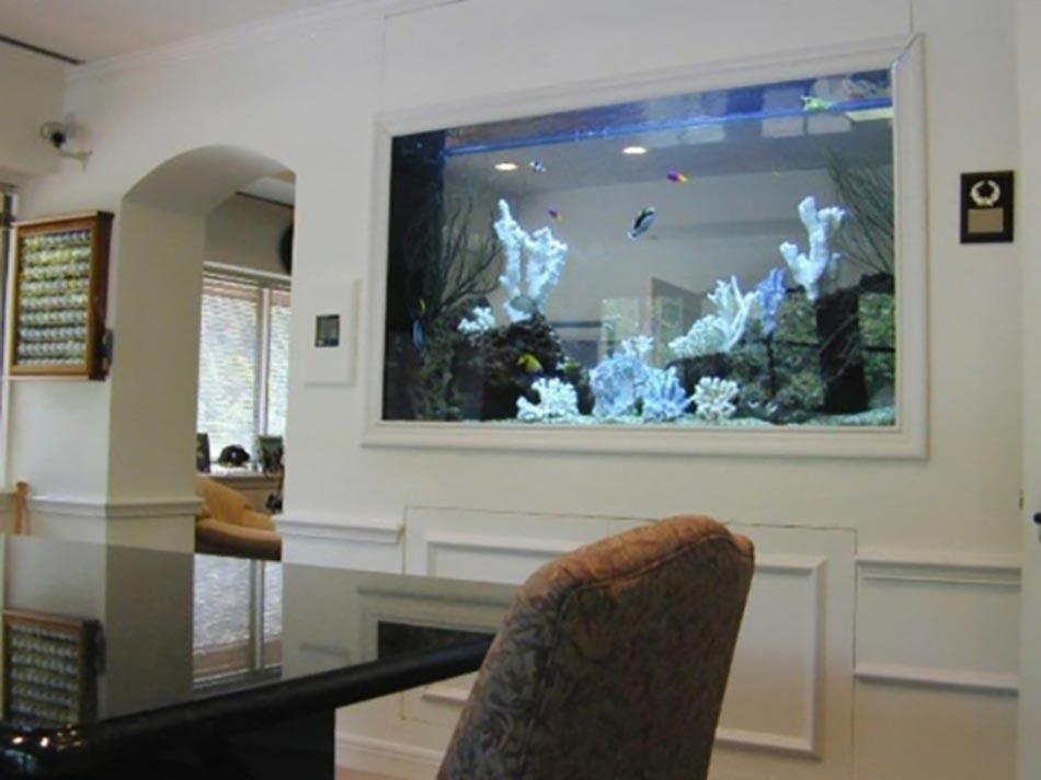 Future Cuisine Aquarium Poisson