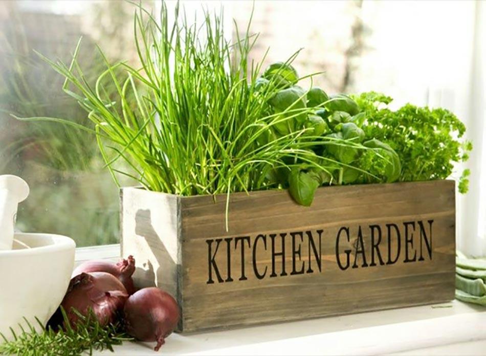 Mini Jardinieres Et Pots D Interieur Aux Herbes Aromatiques