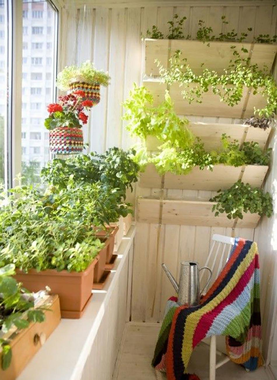 mini jardini res et pots d int rieur aux herbes aromatiques. Black Bedroom Furniture Sets. Home Design Ideas