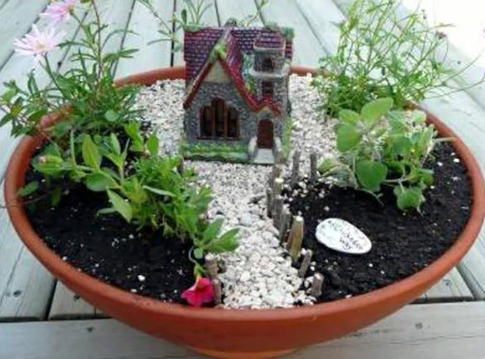 L art du mini jardin coquet - Plantes pour jardin japonais miniature ...
