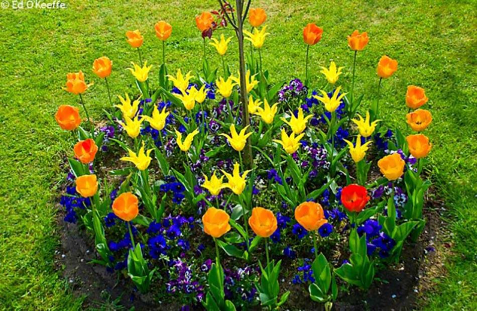 Grand Plate Bande En Fleurs Décoration De Jardin. Décoration Originale Du0027extérieur