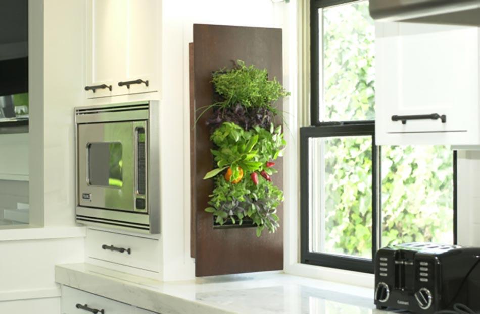 Jardin Interieur Cuisine De Future