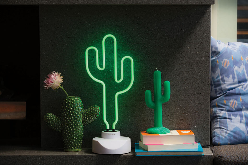 d co cactus une tendance sympa pour nos maisons design feria. Black Bedroom Furniture Sets. Home Design Ideas