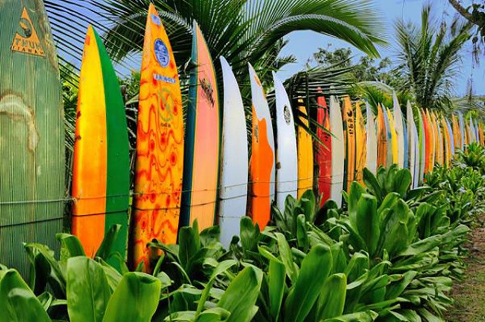 Ambiance Exotique Avec Une Clôture Composée De Planches De Surfs