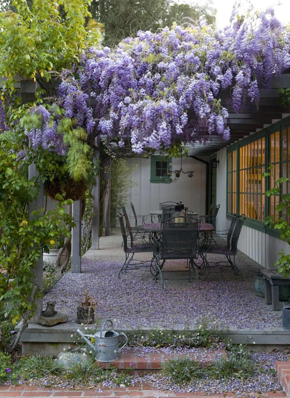 12 exemples d am nagement jardin avec des glycines for Exemple de decoration de jardin