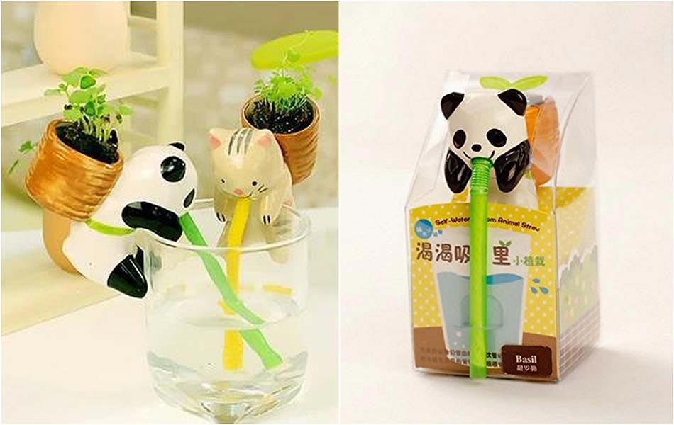 Les Petits Animaux à La Main Verte Deviendront Un Compagnon Préféré Des  Petits. Panda Petit Pot De Fleurs