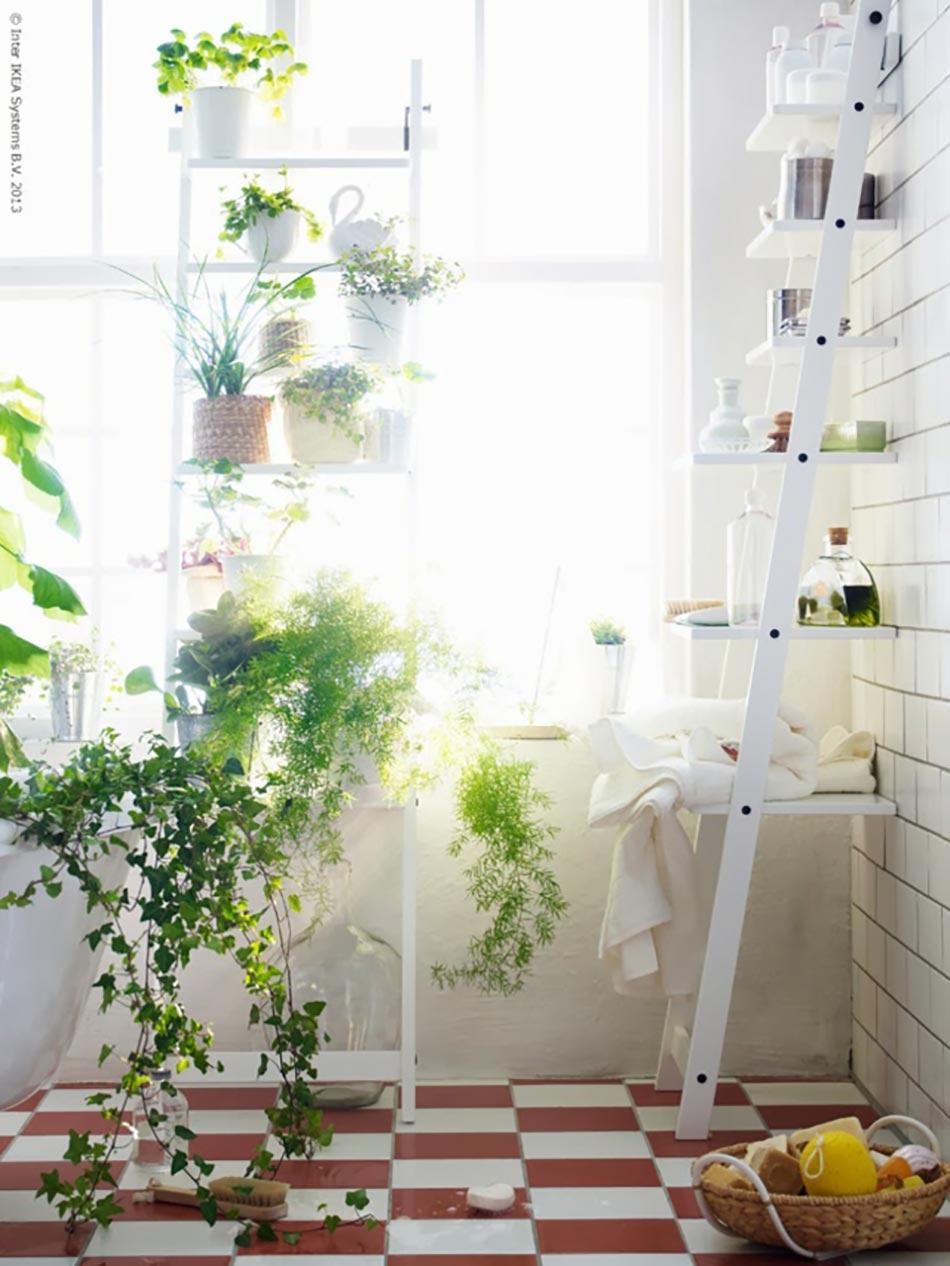 D coration florale pour une salle de bain moderne - Plantes salle de bain ...