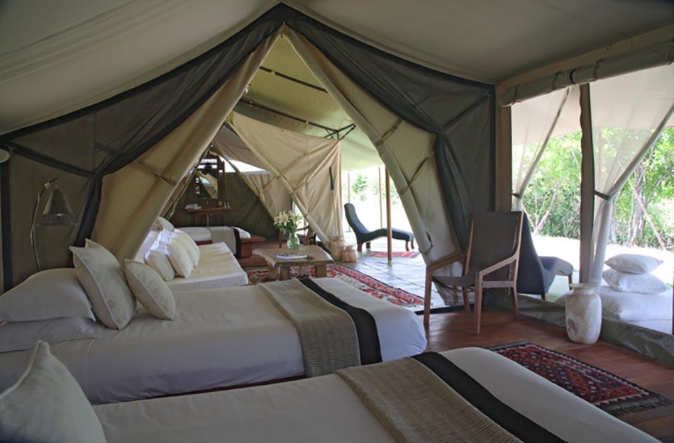 un safari au kenya sous des tentes confortables et