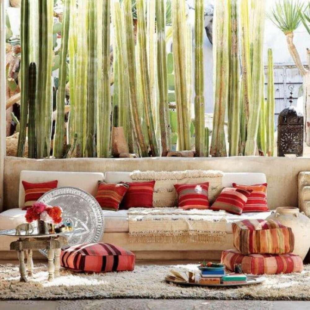 aménagement design terrasse outdoor maison cactus déco