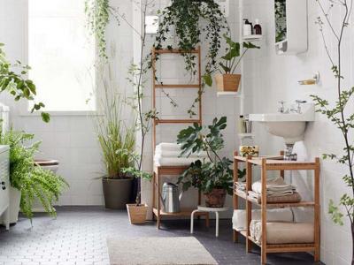 idées déco salle de bain plantes vertes