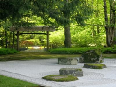 jardin zen dans un parc japonnais