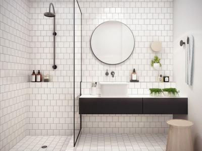 salle de bain design noir et blanc élégant