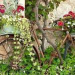 vieille bicyclette devenu accessoire jardin