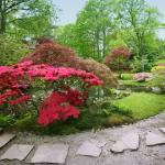 joli jardin japonais