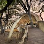vacances safari Afrique lodge luxe