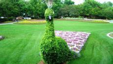 Jardin à la décoration de personnages Disney