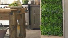 herbes aromatiques d'intérieur en verticale