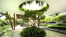 Jardin paysagiste à la verdure riche
