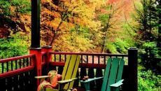 terrasse d'automne en couleurs rouge et jaune