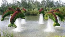 Décoration de jardin originale