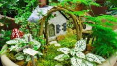 2 réaliser un joli mini jardin