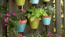 Pots de fleurs multicolores déco jardin