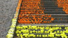 Escalier street art devant la cathédrale d'Angers - France