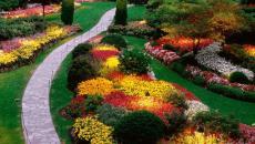 plate-bande en fleurs décoration de jardin