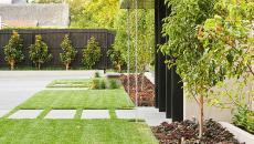 le jardin près la porte d'entrée