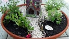 6 réaliser un joli mini jardin