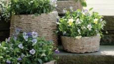 Pots de fleurs originaux