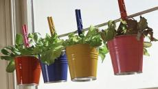 pots multicolores en métal aux herbes aromatiques