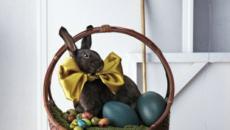 panier avec lapin au chocolat
