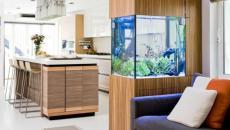 cuisine de future en bois et blanc