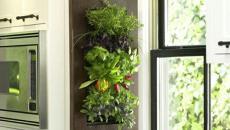 jardinière verticale pour cuisine