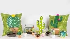 accessoires séjour maison moderne cactus
