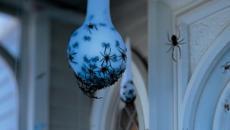 accessoires décoratifs Halloween entrée porte maison