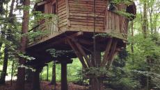 cabane dans les arbres à louer