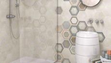 belle déco avec carrelage mural salle de bain