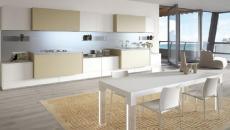 belle projet de cuisine moderne et contemporaine