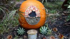 décorer le jardin avec citrouilles art