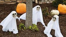 Décoration sympa Halloween fantômes citrouilles courges