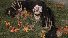 Terrifiante décoration Halloween squelette la mort