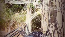 idées décoration Halloween originale jardin outdoor