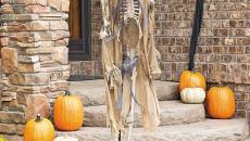 squelette décoration Halloween citrouilles jardin