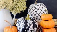 citrouilles natures art design pour décorer halloween