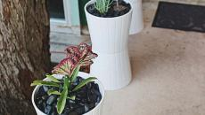 déco terrasse patio pots de fleurs diy